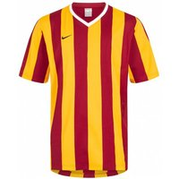 Nike Herren Inter Stripe Trikot